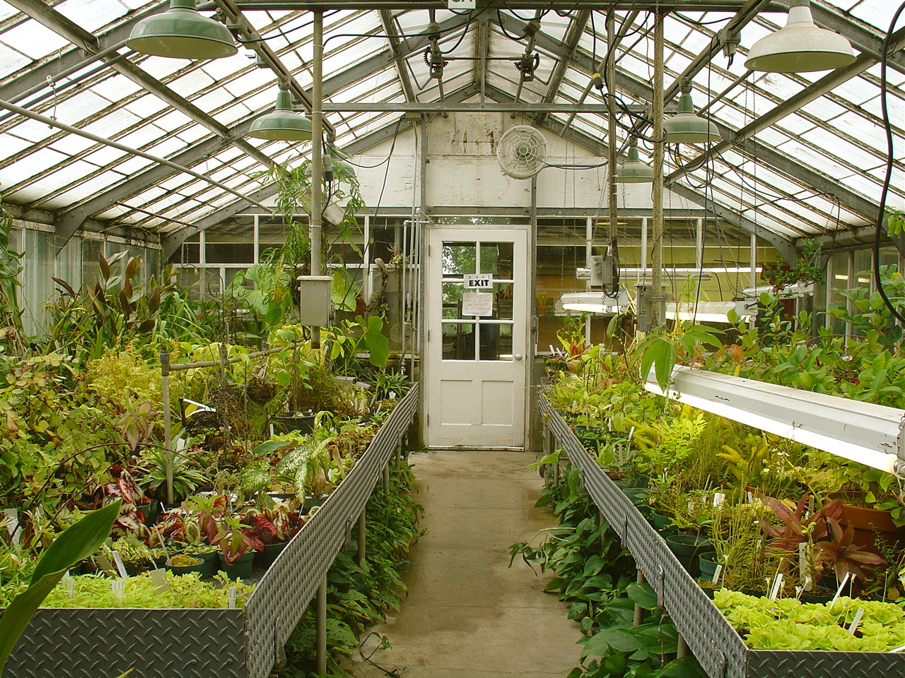 greenhouse source photographer ann althouse