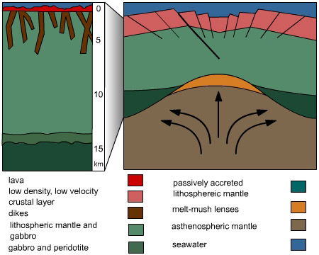 dome mountains formation Dome mountains are built when the hot magma rises from the mantle and uplifts the overlying sedimentary layer of the earth's crust in the process, the magma is not actually erupted, but it cools down and hardens, thereby forming the core of the mountain.