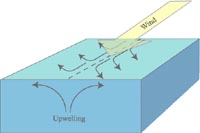 Upwelling and climate diagram illustrating the principle of equatorial upwelling winds along the equator dotted line create currents which are then diverted north and south ccuart Gallery