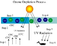 The Link To The Ozone Problem