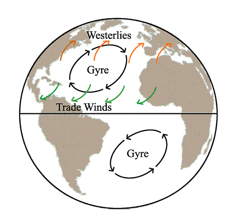 Diagram Of Westerlies Search For Wiring Diagrams